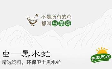 生态农产品提货平台 土鸡土鸡蛋提货系统